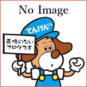 画像なしブログ